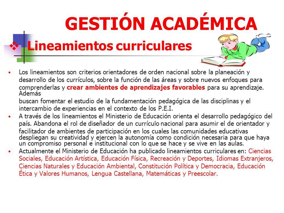 GESTIÓN ACADÉMICA Lineamientos curriculares