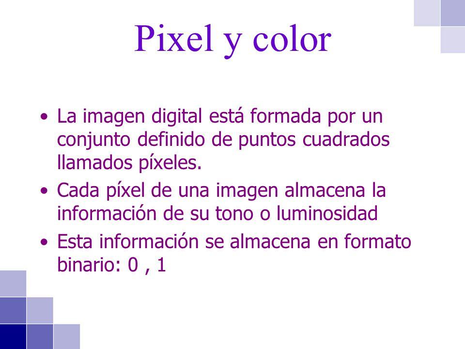 Pixel y color La imagen digital está formada por un conjunto definido de puntos cuadrados llamados píxeles.