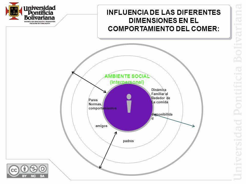 INFLUENCIA DE LAS DIFERENTES DIMENSIONES EN EL COMPORTAMIENTO DEL COMER: