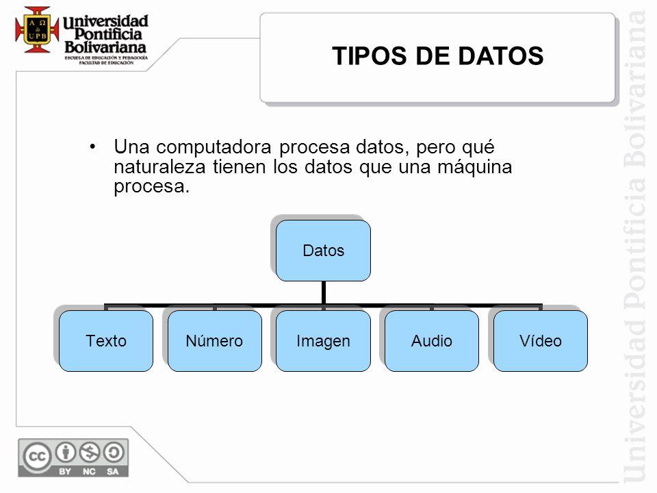 TIPOS DE DATOS Una computadora procesa datos, pero qué naturaleza tienen los datos que una máquina procesa.
