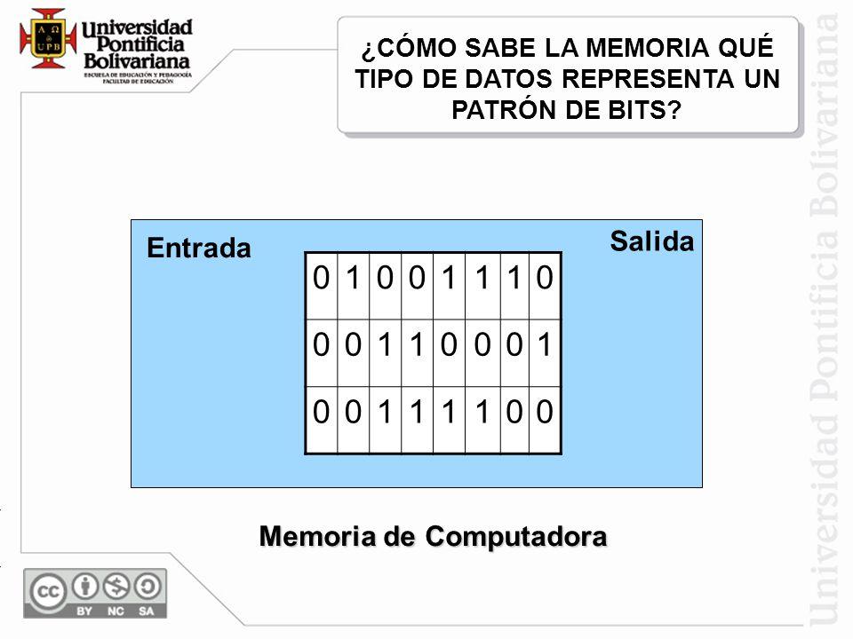 1 Salida Entrada Memoria de Computadora