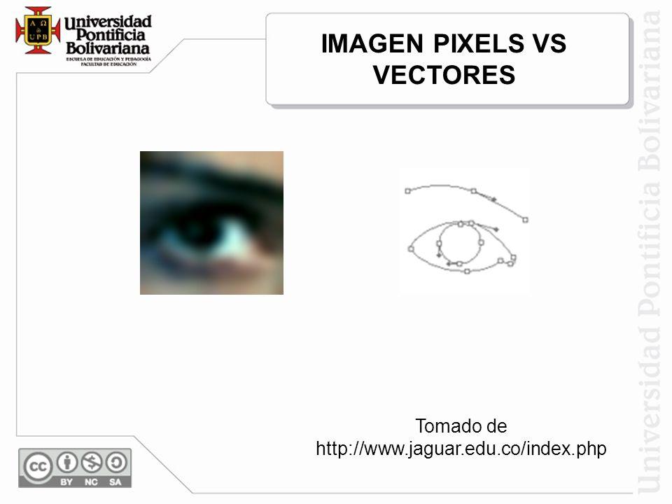 IMAGEN PIXELS VS VECTORES