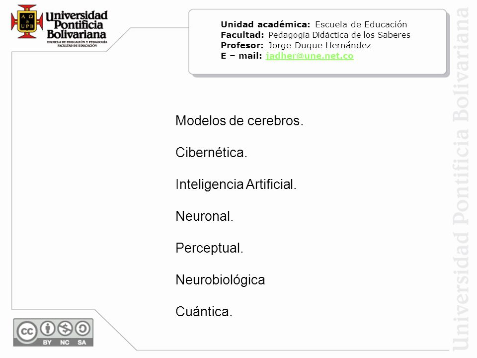 Inteligencia Artificial. Neuronal. Perceptual. Neurobiológica