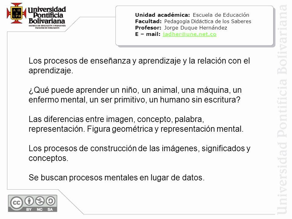Se buscan procesos mentales en lugar de datos.