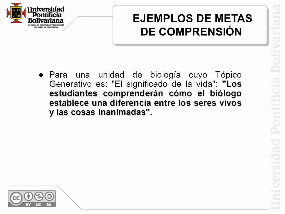EJEMPLOS DE METAS DE COMPRENSIÓN