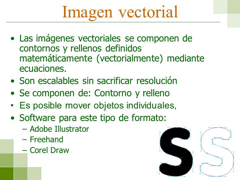 Imagen vectorial Las imágenes vectoriales se componen de contornos y rellenos definidos matemáticamente (vectorialmente) mediante ecuaciones.