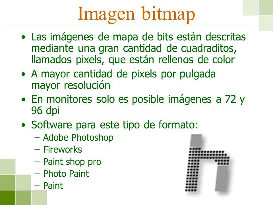 Imagen bitmap Las imágenes de mapa de bits están descritas mediante una gran cantidad de cuadraditos, llamados pixels, que están rellenos de color.