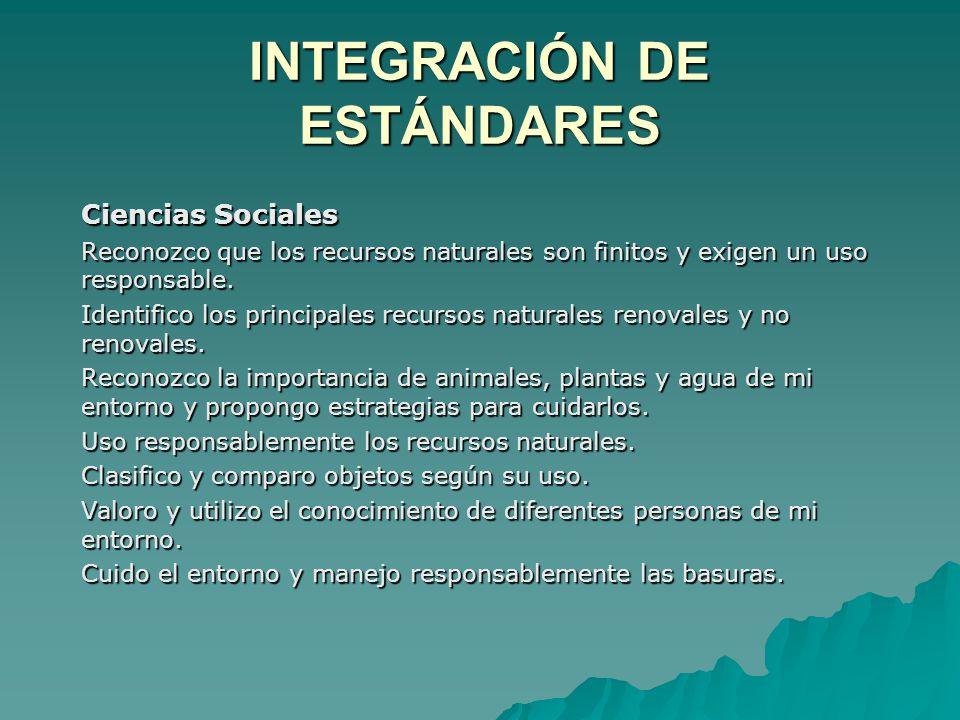 INTEGRACIÓN DE ESTÁNDARES