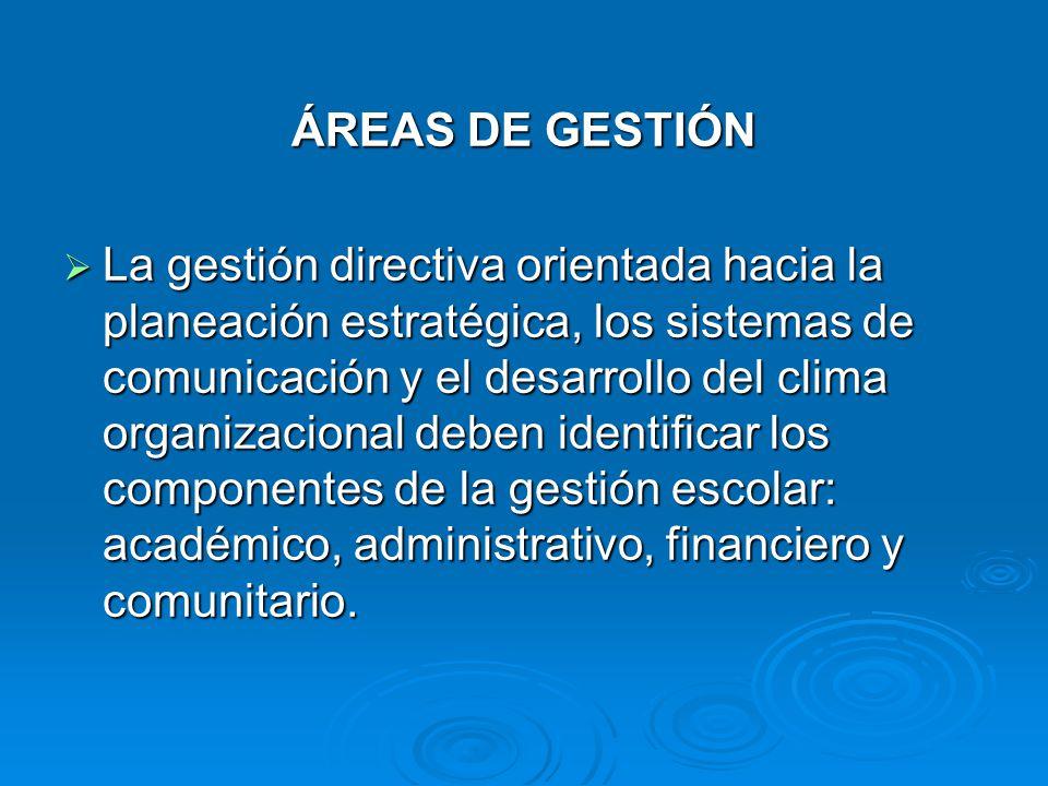 ÁREAS DE GESTIÓN