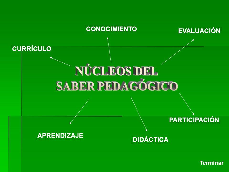 NÚCLEOS DEL SABER PEDAGÓGICO