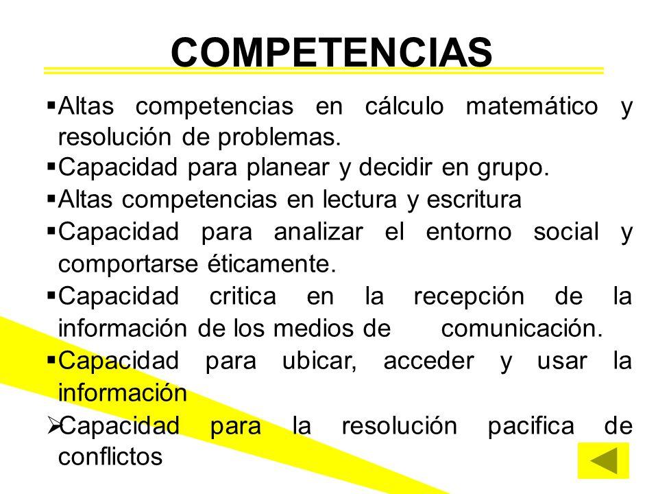 COMPETENCIAS Altas competencias en cálculo matemático y resolución de problemas. Capacidad para planear y decidir en grupo.