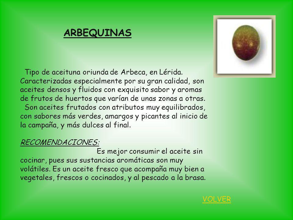ARBEQUINAS Tipo de aceituna oriunda de Arbeca, en Lérida.