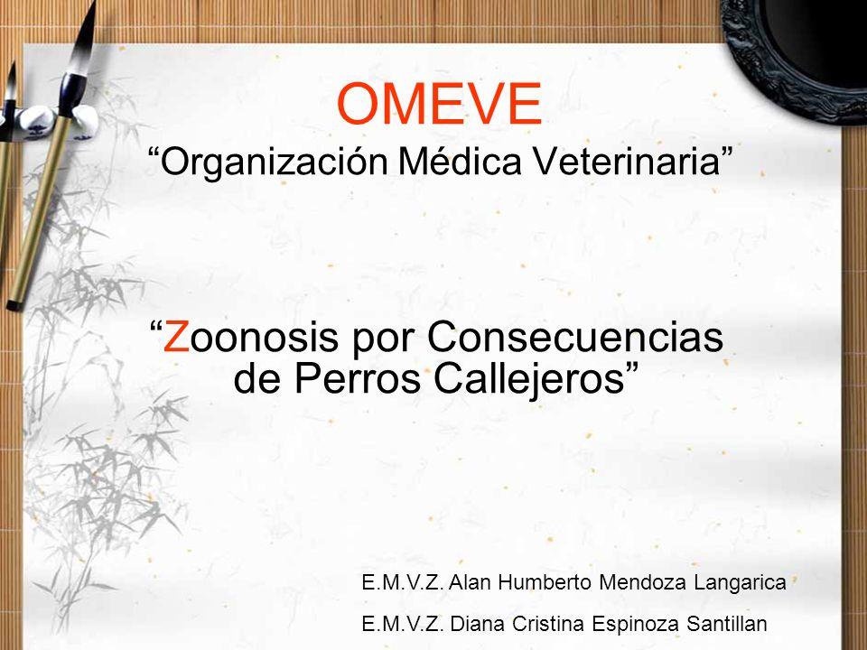OMEVE Organización Médica Veterinaria