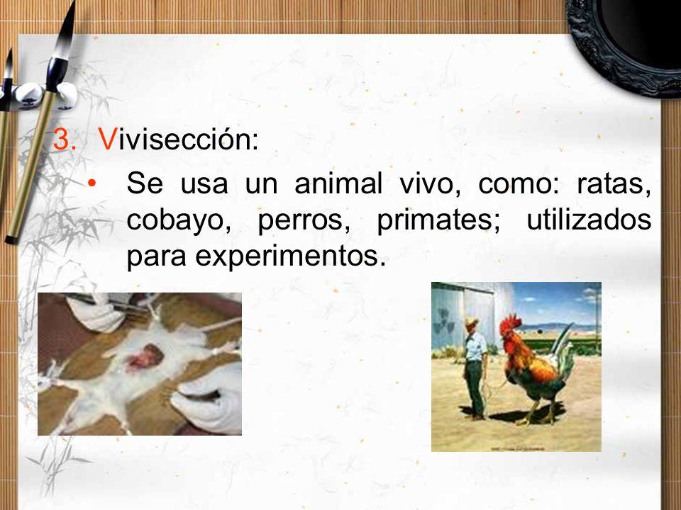 Vivisección:Se usa un animal vivo, como: ratas, cobayo, perros, primates; utilizados para experimentos.