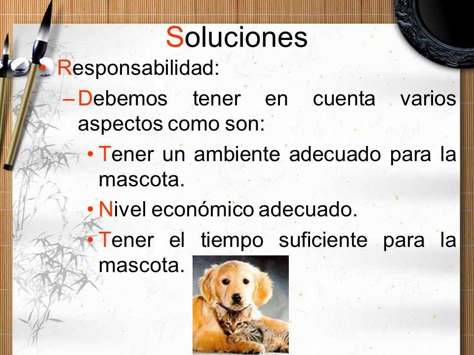 Soluciones Responsabilidad: