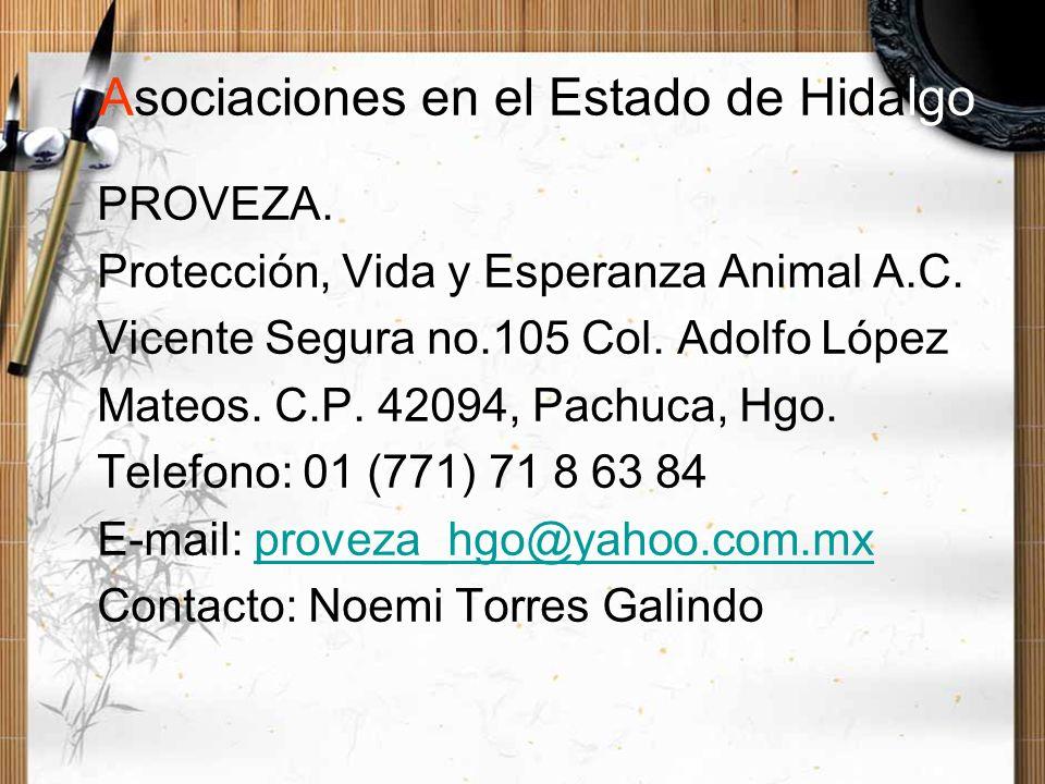 Asociaciones en el Estado de Hidalgo