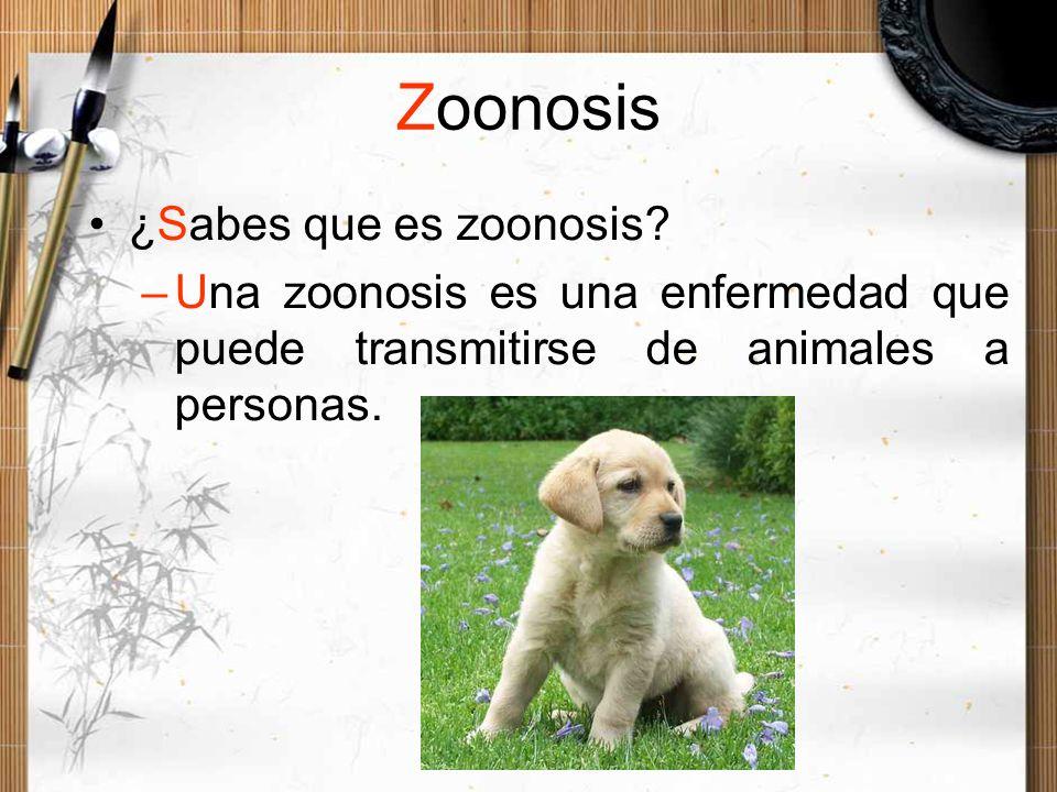 Zoonosis ¿Sabes que es zoonosis