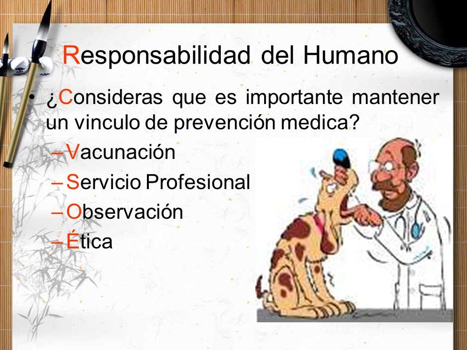 Responsabilidad del Humano