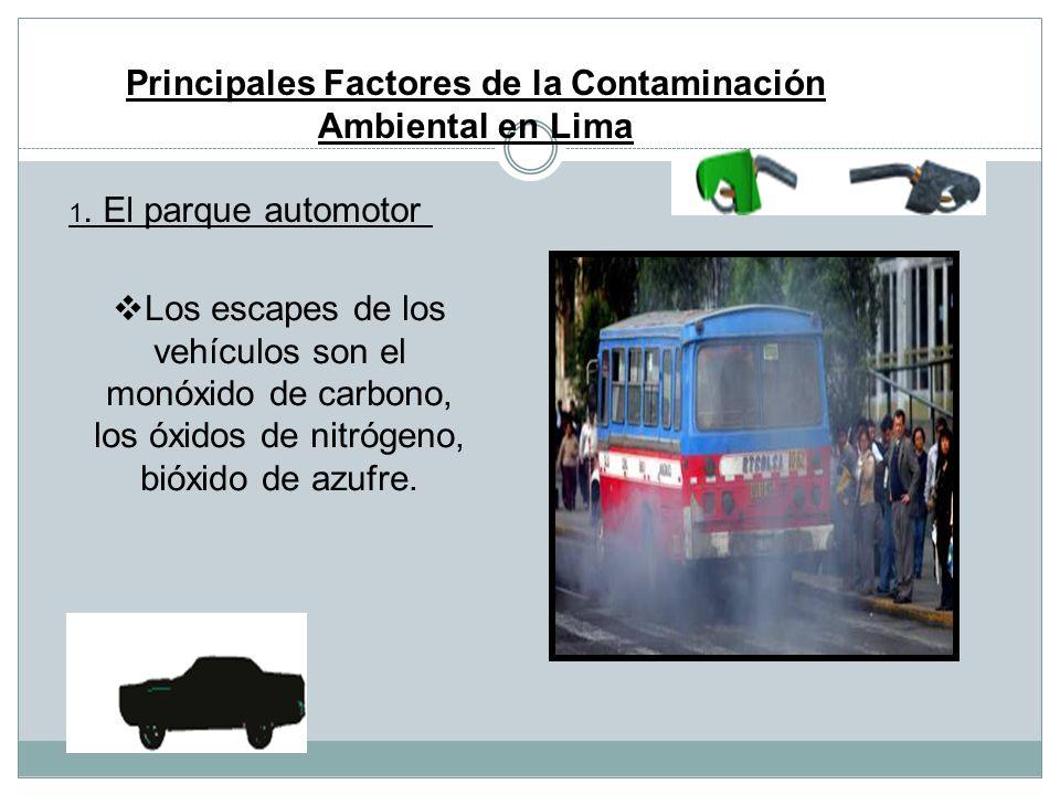 Principales Factores de la Contaminación Ambiental en Lima