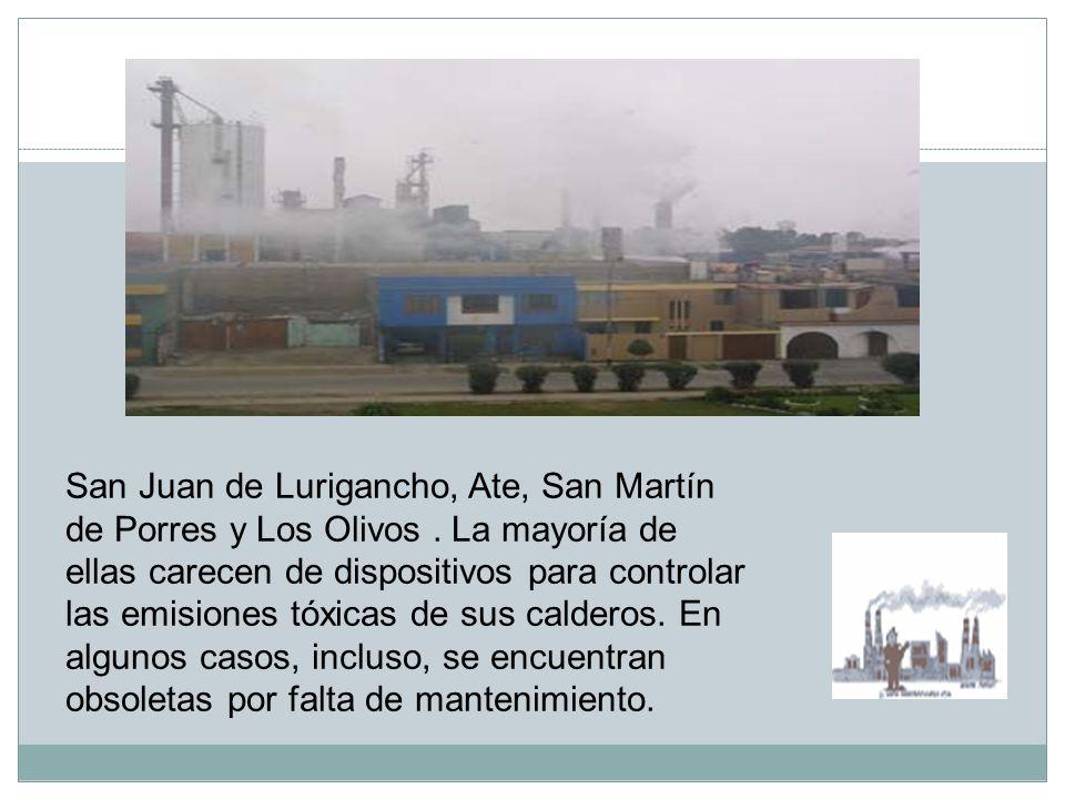 San Juan de Lurigancho, Ate, San Martín de Porres y Los Olivos