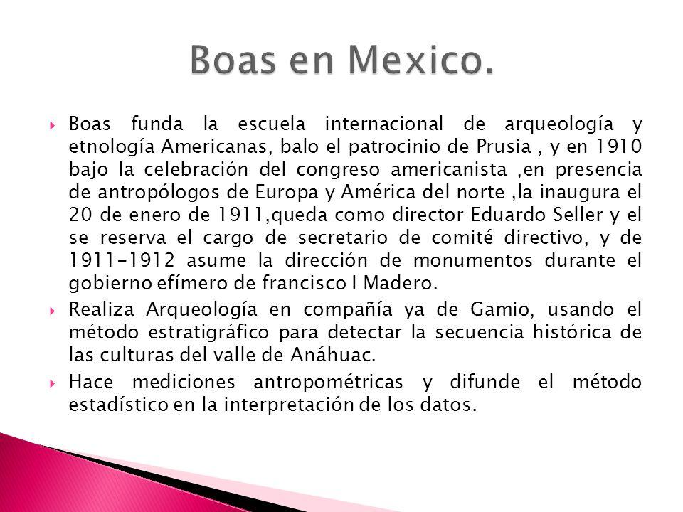 Boas en Mexico.