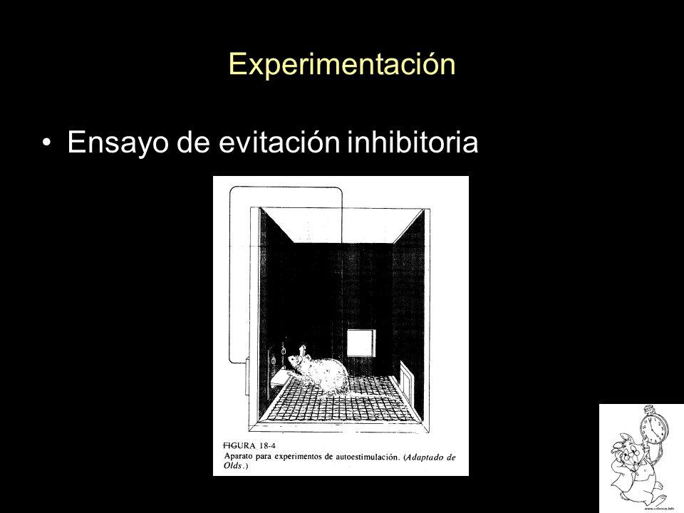 Experimentación Ensayo de evitación inhibitoria