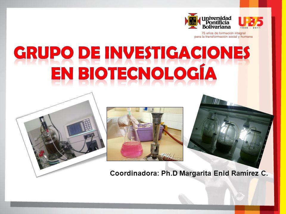 GRUPO DE Investigaciones en biotecnología