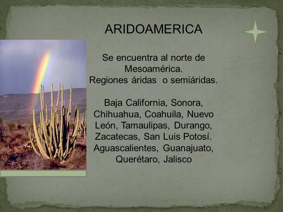 ARIDOAMERICA Se encuentra al norte de Mesoamérica.