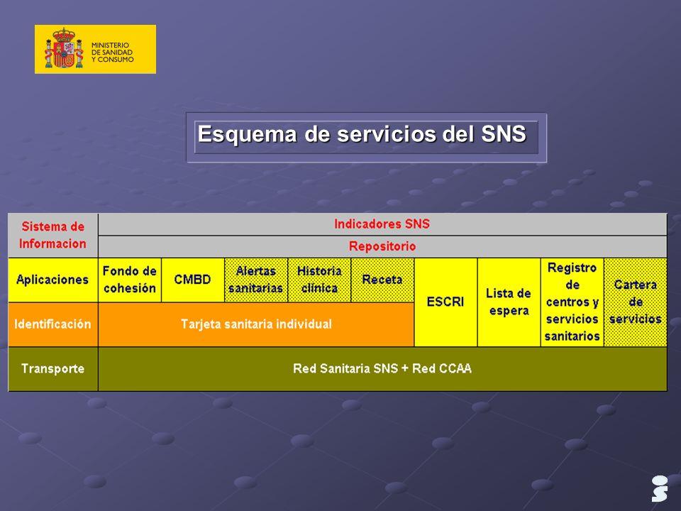 Esquema de servicios del SNS