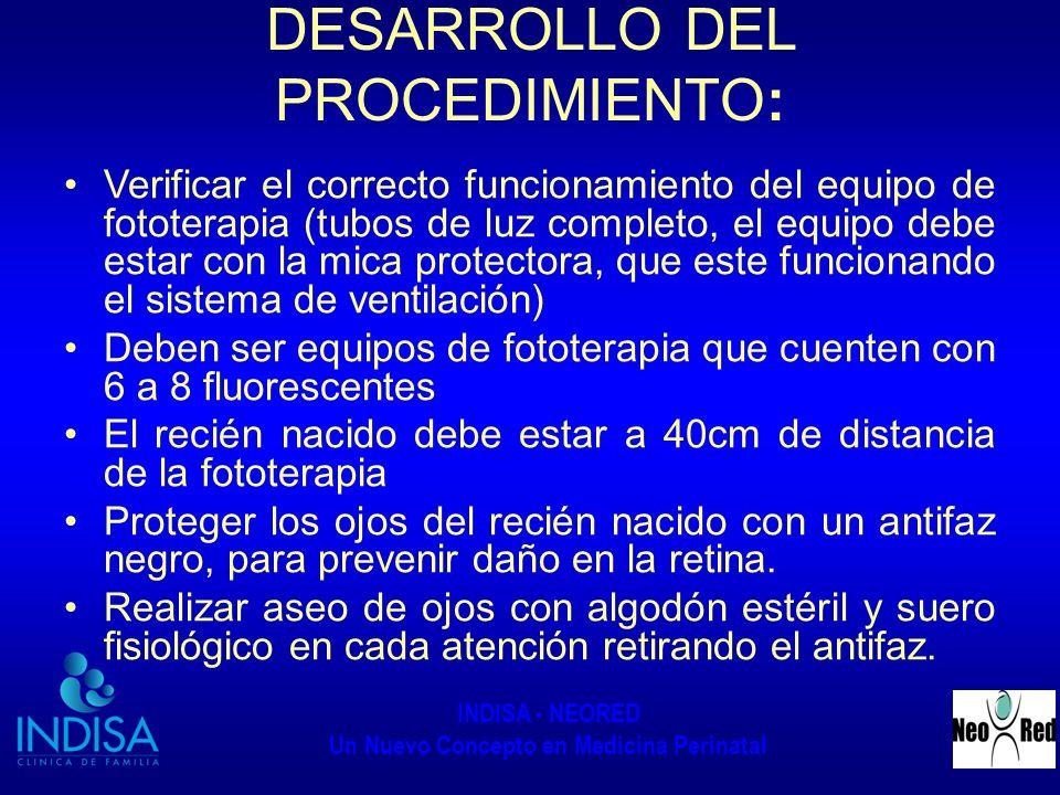 DESARROLLO DEL PROCEDIMIENTO: