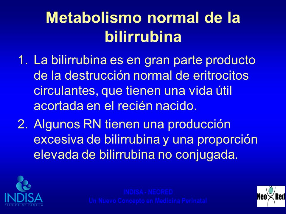 Metabolismo normal de la bilirrubina