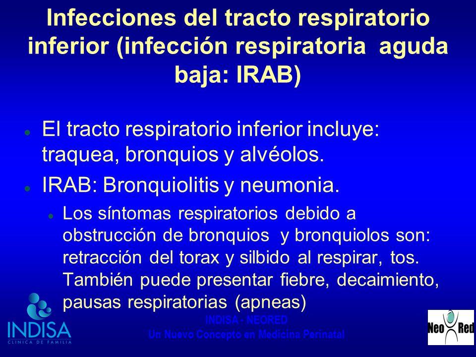 Infecciones del tracto respiratorio inferior (infección respiratoria aguda baja: IRAB)