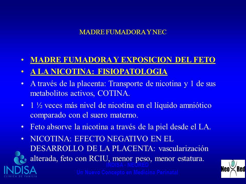 MADRE FUMADORA Y EXPOSICION DEL FETO A LA NICOTINA: FISIOPATOLOGIA
