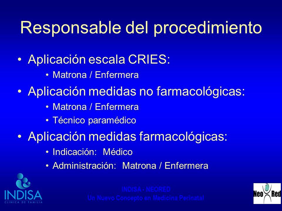 Responsable del procedimiento