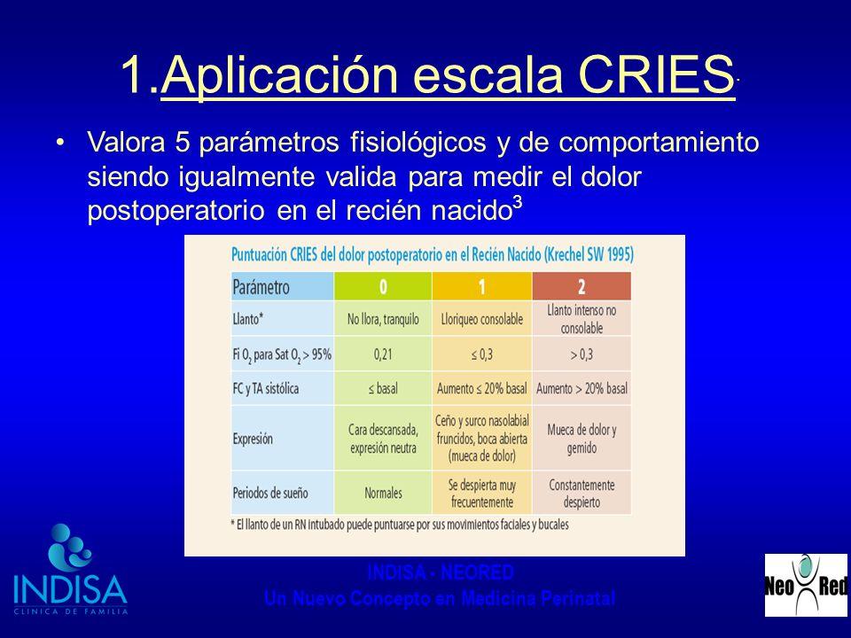 Aplicación escala CRIES.