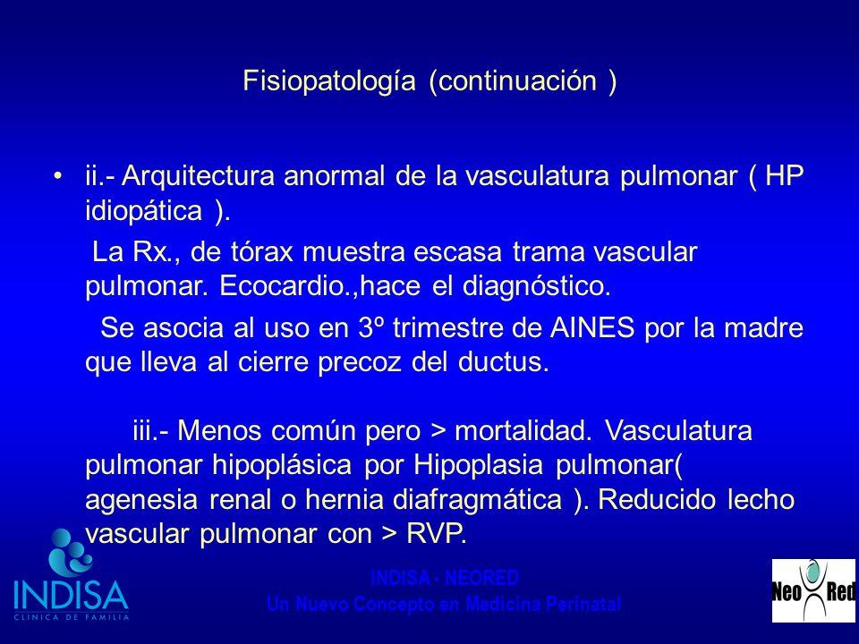 Fisiopatología (continuación )