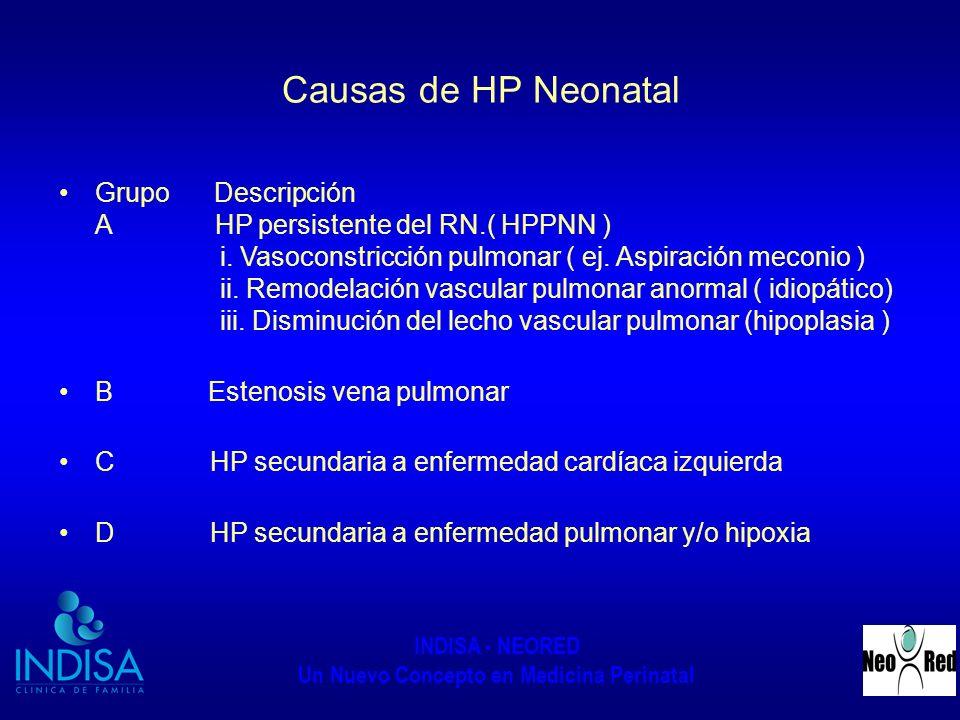 Causas de HP Neonatal