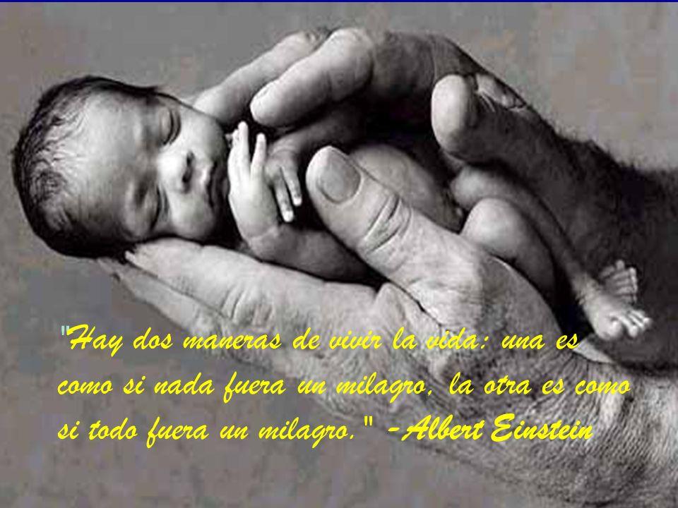 Hay dos maneras de vivir la vida: una es como si nada fuera un milagro, la otra es como si todo fuera un milagro. -Albert Einstein