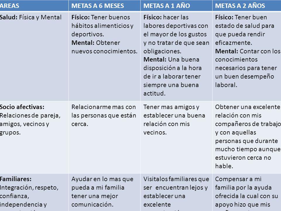 AREAS METAS A 6 MESES. METAS A 1 AÑO. METAS A 2 AÑOS. Salud: Física y Mental. Físico: Tener buenos hábitos alimenticios y deportivos.