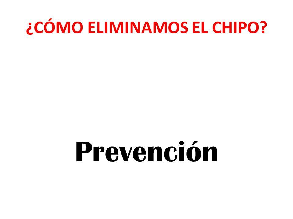 ¿CÓMO ELIMINAMOS EL CHIPO
