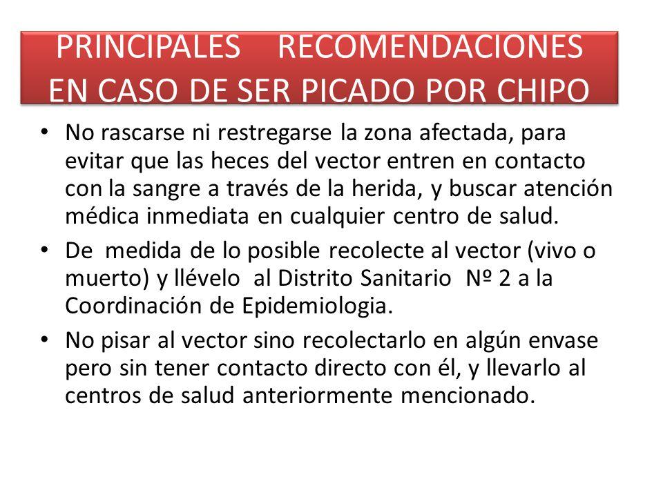 PRINCIPALES RECOMENDACIONES EN CASO DE SER PICADO POR CHIPO