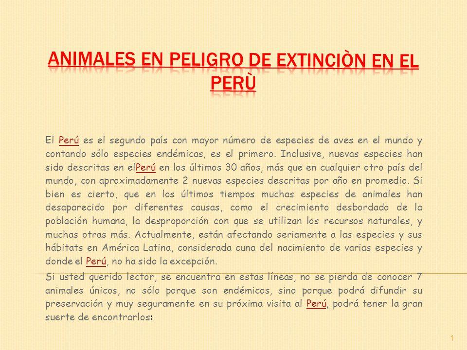 Animales en peligro de extinciòn en el Perù