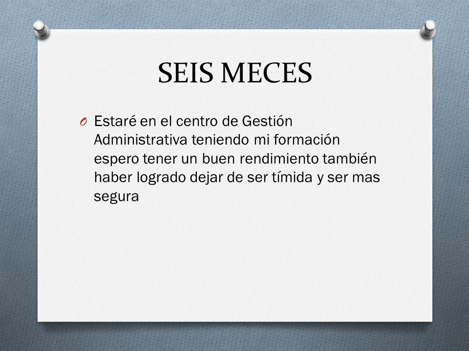 SEIS MECES