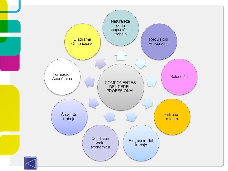 Naturaleza de la ocupación o trabajo Requisitos Personales Selección