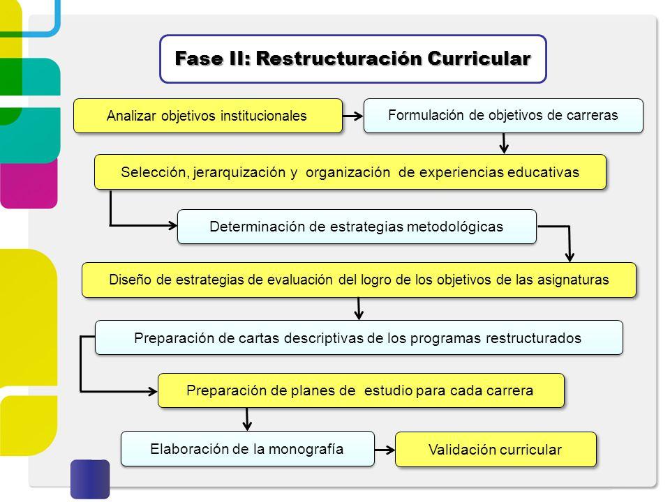 Fase II: Restructuración Curricular