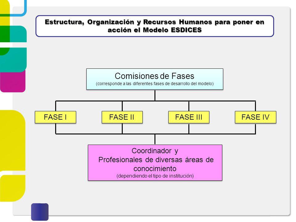 Comisiones de Fases FASE I FASE II Coordinador y