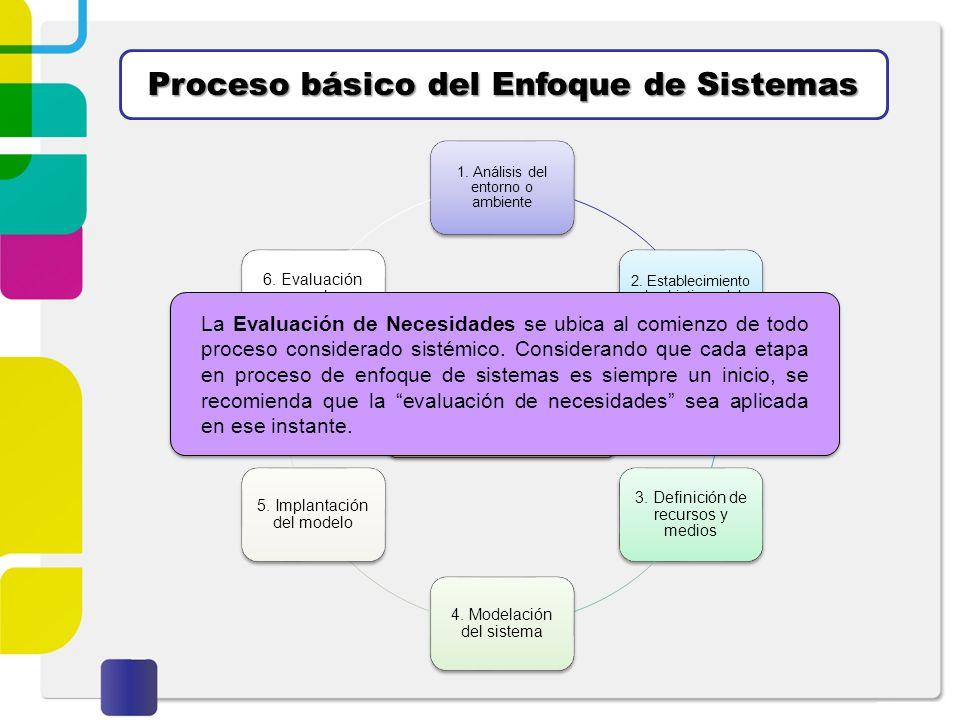 Proceso básico del Enfoque de Sistemas