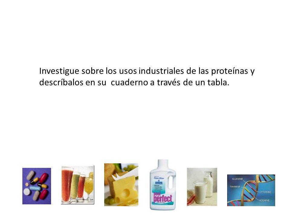Investigue sobre los usos industriales de las proteínas y descríbalos en su cuaderno a través de un tabla.