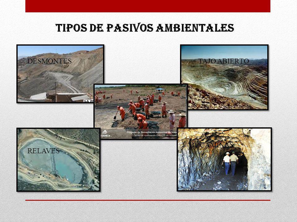 TIPOS DE PASIVOS AMBIENTALES