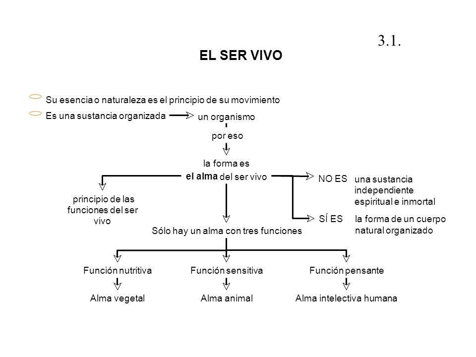 3.1. EL SER VIVO. Su esencia o naturaleza es el principio de su movimiento. Es una sustancia organizada.